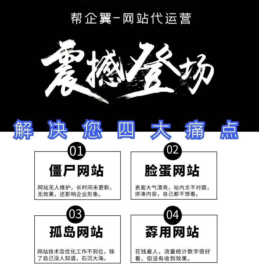 门户/行业/平台网站代运营(图2)